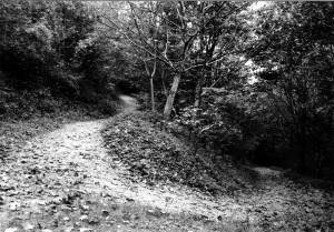 Klein-Weg1