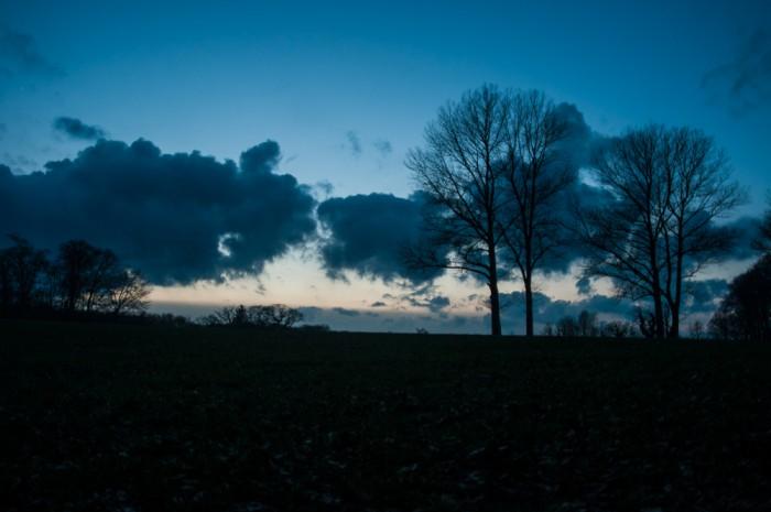 Schlosswald_Hagen_(5_von_5)