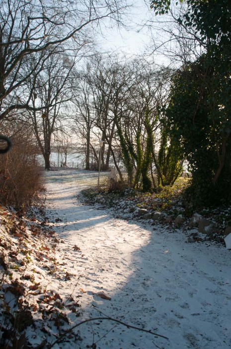 Begleitet mich doch auf einen Winterspaziergang über den schönen Koppelsberg.