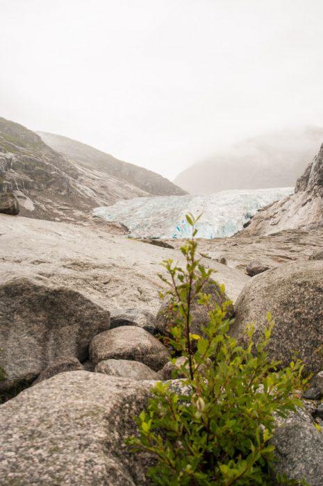 Bis hier vorne ging die Gletscherzunge mal.
