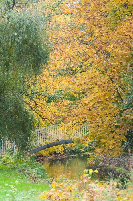 Park im Herbstkleid