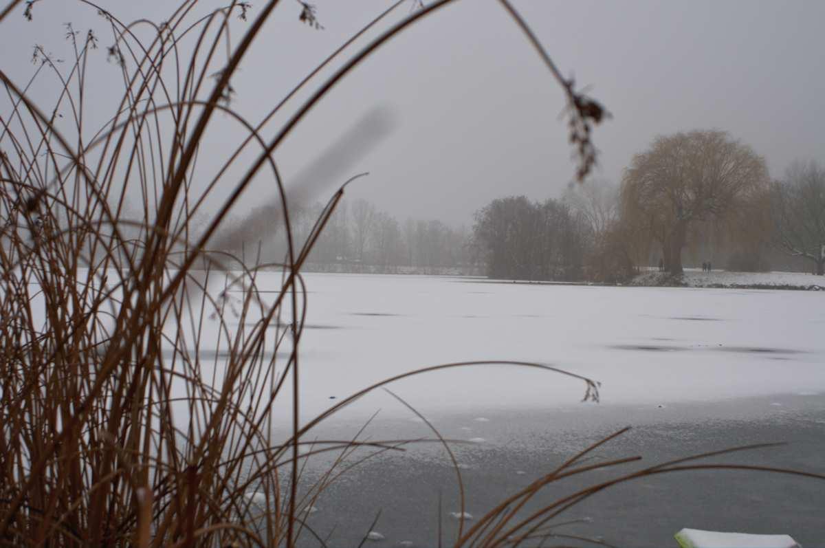 Winterreise am Baggersee